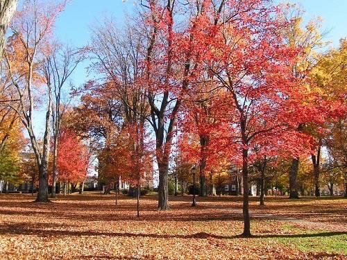 16. Bates College - Lewiston, Maine