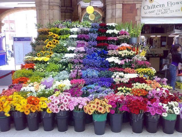FloralManagement11