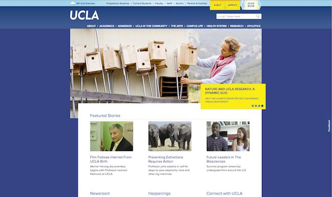 24 UCLA-cap