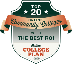 Online Community Colleges with the Best ROI