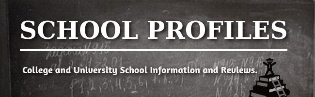 online school profiles