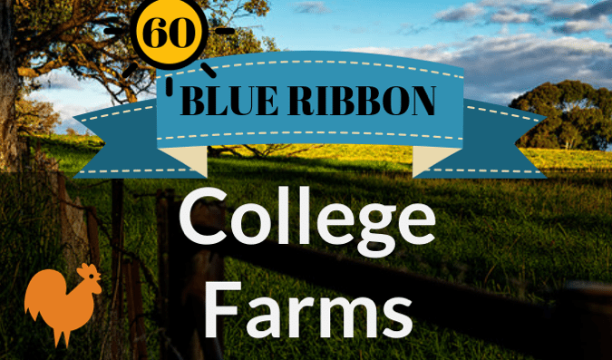 College Farms