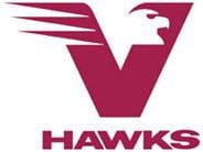 Vhawk Logo