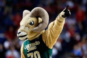 Colorado State Mascot