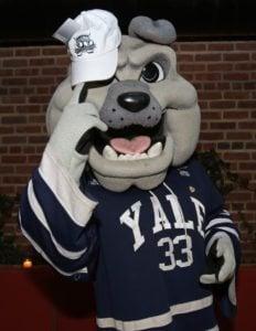 Yale University Mascot