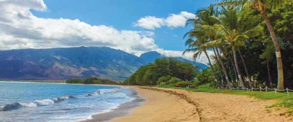 Online Degree Rowan University Hawaii