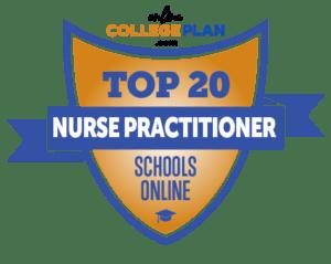 Nurse Practitioner Schools Online