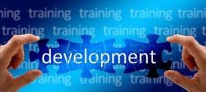 PhD in Training and Development