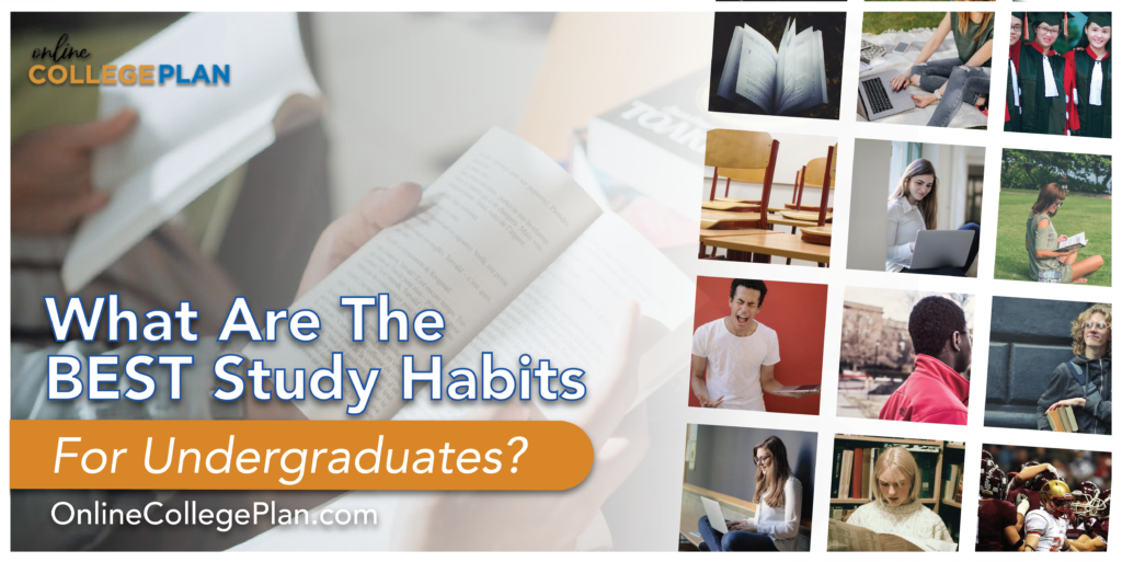 best study habits undergraduates